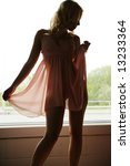 Silhouette of Woman in Lingerie - stock photo