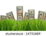 Twenty dollar bills growing in the green grass - stock photo