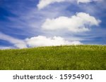 Green field and blue sky with fluffy clouds - stock photo