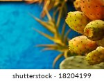 Indian figs against blue wall with shallow depth of field and copy space - stock photo