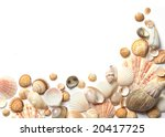 Shell  frame on white background - stock photo
