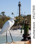 Snowy egret sitting on railing of fishing pier on Sanibel Island, Florida, with lighthouse in the background. - stock photo
