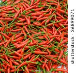 Nice background with fresh red hot pepper - stock photo