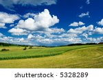 Curved edge of a green wheat field - stock photo