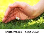hands and flower close up - stock photo