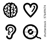 Brain, heart, ear, eye. - stock vector