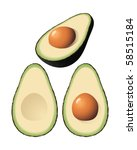 An isolated vector avocado and halves - stock vector