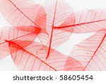 red paper leaves - stock photo