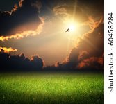 Fantasy landscape. Magic sunset and bird on sky in sun light - stock photo