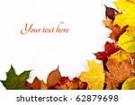 Colorful horizontal frame of fallen autumn leaves - stock photo