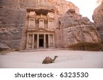 Camel in front of Treasury Petra Jordan - stock photo