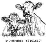 two cows - black and white sketch - stock vector