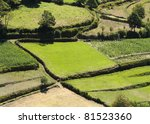 fields landscape with green blocks - stock photo