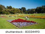 Flowers in Golden Gate Park - stock photo