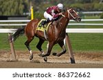 "ELMONT, NY - OCT 8: Jockey Corey Nakatani pilots ""Tapizar"" to victory in an allowance race at Belmont Park on Oct 8, 2011 in Elmont, NY. - stock photo"