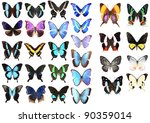 Very Many blue butterflies isolated on white background - stock photo