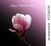 A Valentine Card with a single magnolia bloom isolated on gradient pink and black background. Happy Valentine Day message. - stock photo