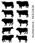 Collection of silhouettes of cows and bulls - stock vector