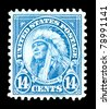 USA - CIRCA 1923-  Titled  American Indian, this stamp shows Chief Hollow Horn Bear (1850-1913)  of the Brule Sioux tribe and was a leader the Indian Wars of the Great Plains of the U.S., circa 1923. - stock photo