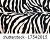 Wild African animal hide pattern zebra straps - stock photo
