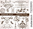 Collect Calligraphic and Floral element for design, vector illustration - stock vector